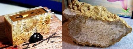 Koetsu Coralstone Platinum (2)