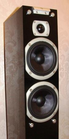 пищалка Audiovector