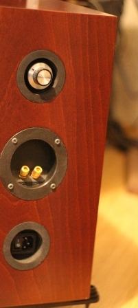 электростатические акустические системы сзади