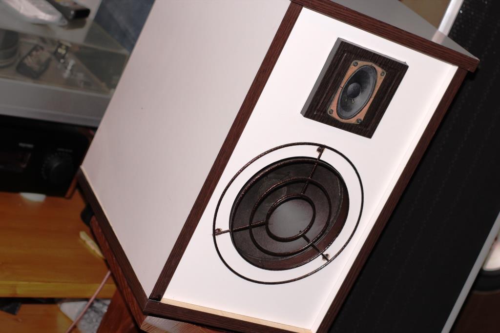 полочная акустика в ОЯ на широкополосных динамиках