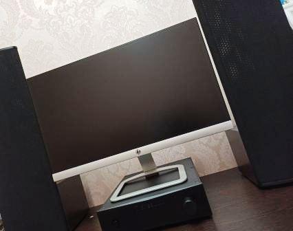 Электростатическая акустика Статик ЗМ - мини +монитор 22дюйма