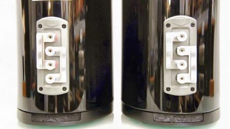 Quad Z-1 задняя панель
