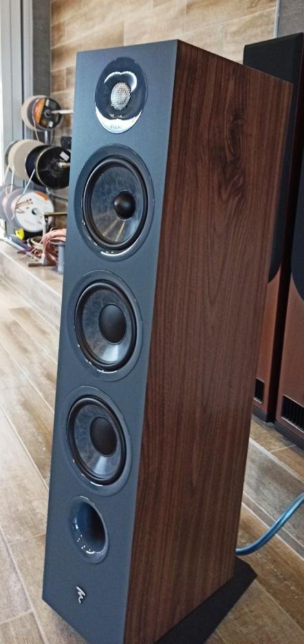 Focal Chora 826 акустика в салоне-магазине