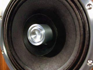 динамики Zu Audio Omen