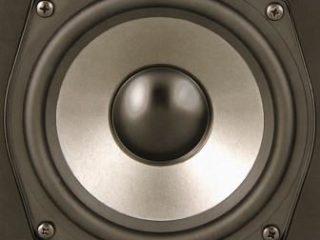 Polk Audio T15 НЧ динамик